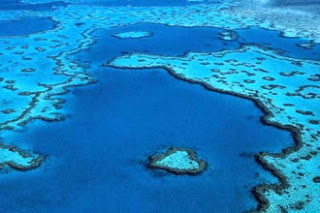 PLACES I WANT TO GO: The Great Barrier Reef